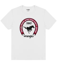 Pánské tričko Americana