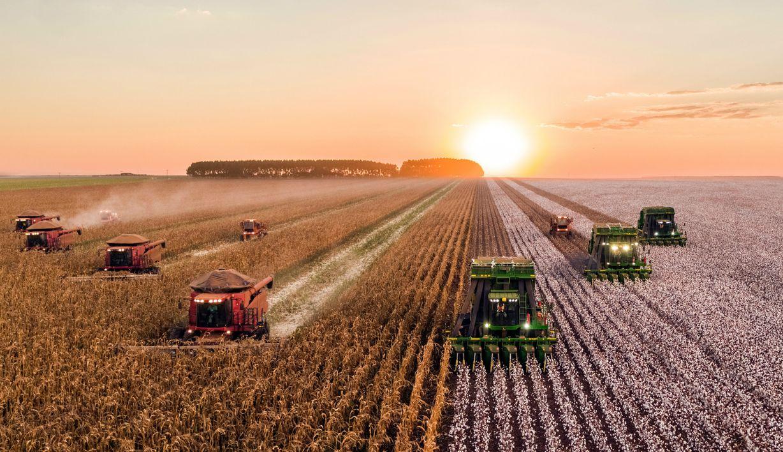 Zemědělství v éře robofarmářů. Bude nám AI trhat i jahody?
